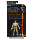 Luke Skywalker #21 - Black Series