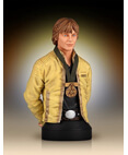 Luke Skywalker (Hero of Yavin) Collectible Mini Bust