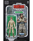 Luke Skywalker (Dagobah) Black Series 6 inch 40th Anniversary
